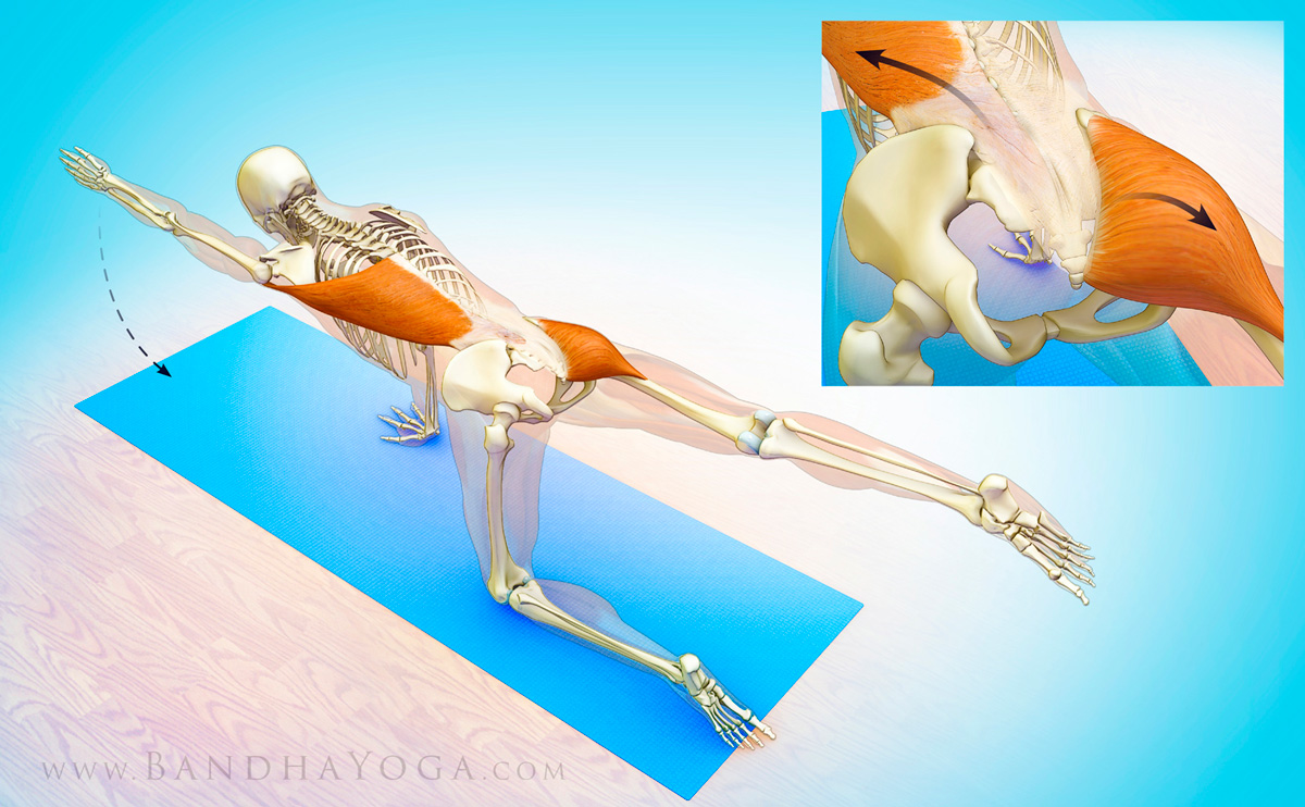 The Daily Bandha The Sacroiliac Joint