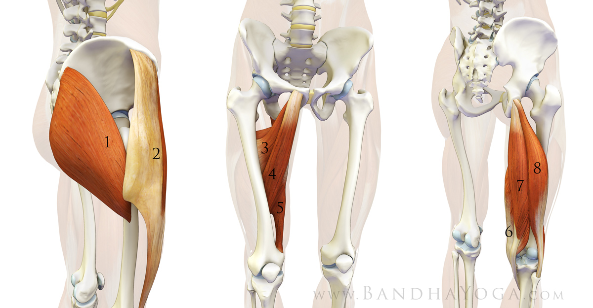 The Daily Bandha Preventing Yoga Injuries Vs Preventing Yoga Part