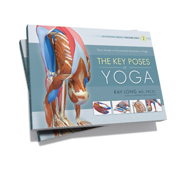 The Key Poses of Yoga